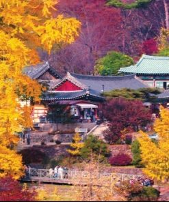 One Week Singapore and Korea 11 Days from $1,499