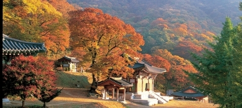 One Week in Korea-Visit Seoul, Gyeongju and Busan from $2,299