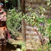 Papua New Guinea Adventure
