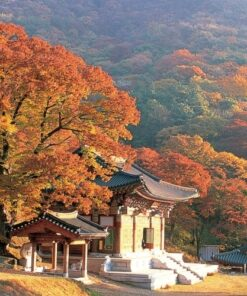 Japan, Singapore and Korea 11 Days from $1,899