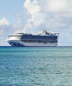 Travel the world on Princess Cruises